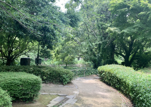 県立図書館から江津湖へ。文学散歩に出かけてみませんか。